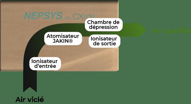 Fonctionnement du module Nepsys